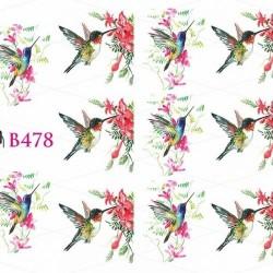 NAKLEJKI WODNE - B478